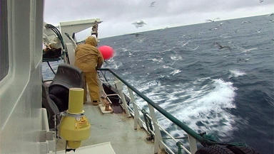CCTV on fishing boats hailed success in Denmark