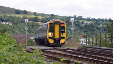 Train:  Bird to blame for delay on tracks.