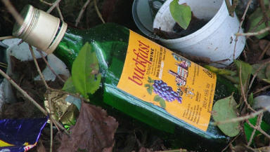 Buckfast was mentioned by Strathclyde Police in 5000 crime reports over three years.