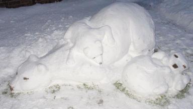 Snow polar bear: created near Aberdeen