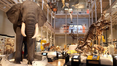 National Museum: Staff to strike on Boxing Day.