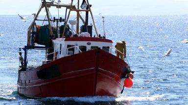 Fish prices and landings