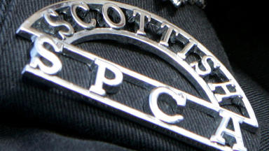 Scottish SPCA: Informed of incident (file pic).