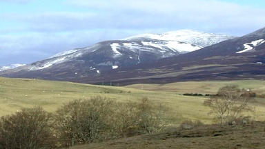 Rescue: The woman had been walking in the Cairngorms.