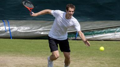 Andy Murray, tennis.