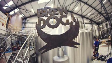 1031-brewdog