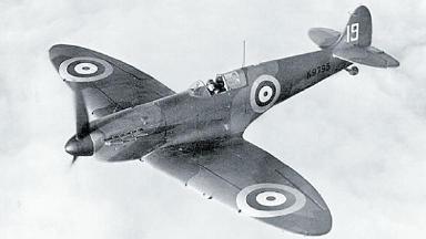 Wreckage found: Staff at Royal Botanics found remains of Spitfire.