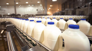 Milk: Müller also announced a £15m investment at its dairy in Bellshill (file pic).