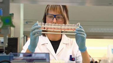 Scientist examining flu samples in lab