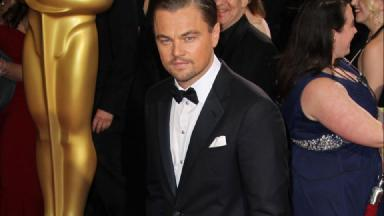 DiCaprio: Won first Oscar this year (file pic).
