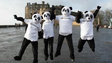 Pandas launch STV Edinburgh TV channel