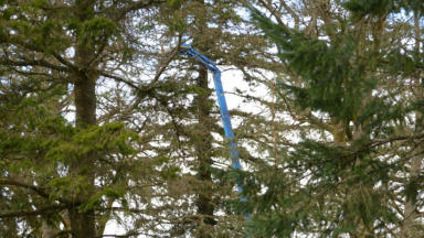 Cherry picker at Strathallan estate, proposed site of T in the Park. Pic from STAG. Uploaded on April 6 2015.
