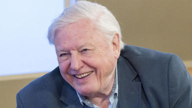 Sir David Attenborough on This Morning