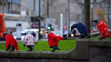The Penguin statues in Dundee dressed in Christmas jumpers as part of Macmillan's Text Santa Christmas appeal.  TEST