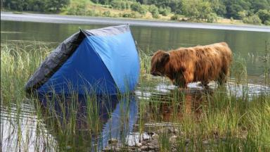 Loch Lomond: Plans to ban camping without a permit on shores.