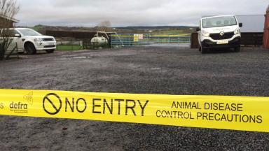 Craigie's Farm: Outbreak of mild strain of bird flu.