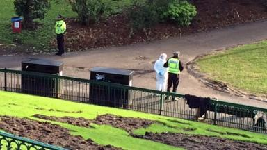 Rape: Police in Union Terrace Gardens after woman raped.