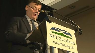 Allan Bowie: The NFU Scotland president says the Scottish Government is failing farmers.