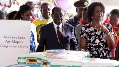 Extravagant: Mugabe views his giant birthday cake.