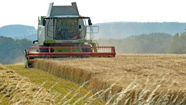 Leading farming figures want Britain to remain a member of the EU.