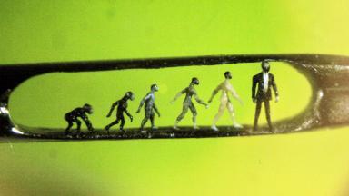 Ascent of Man: One of Willard Wigan's micro sculptures.