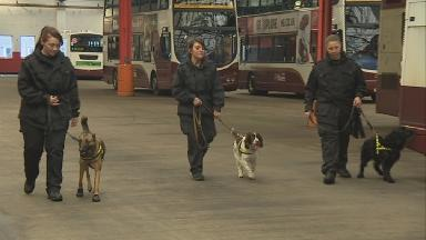 Training: The dogs on patrol in the Lothian Buses depo.