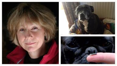 Melanie Reid, Pip, and the new canine microchip.