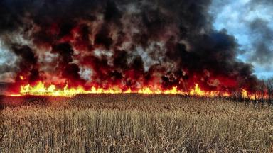 Wildfire: A huge blaze broke out in South Ayrshire (file pic).