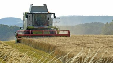 Farming: Sector to benefit from funding boost (file pic).