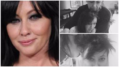 Shannen Doherty played Brenda Walsh in the original series of Beverly Hills 90210.