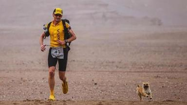 Gobi joined Dion Leonard as he ran the 4 Desert challenge