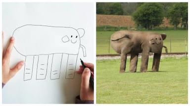 An elephant as seen by Dom.