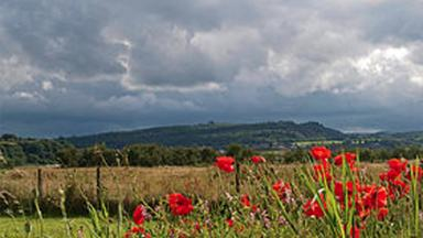 Gillies Hill: Area becomes first local nature conservation site in Stirling.