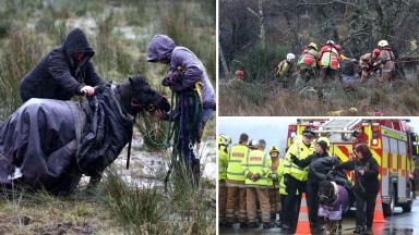 Rescue: Shetland Pony Nemo got into difficulty.