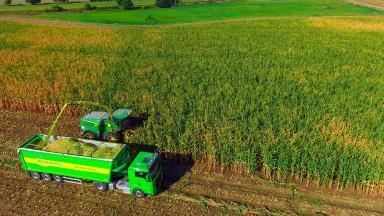 Farming: Union said no deal would be 'deeply damaging' (file pic).