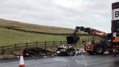 Gutted: Burnt wreckage was cleared from motorway using heavy machinery.