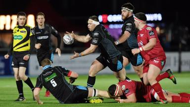 Defeat: The Scots lost out to Scarlets at home.