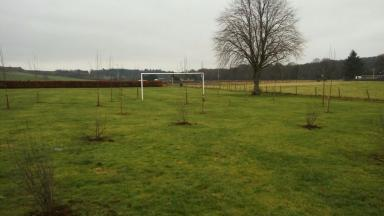 Football pitch trees planted in middle Aberdeenshire Council uploaded Monday February 13 2017