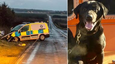 Composite of A90 crash involving police dog van and labrador Sam who had to be put down.