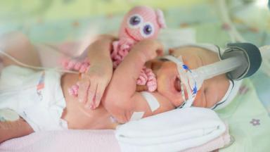 Octopus for a Preemie - NOT FOR REUSE