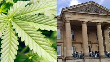 Cannabis farm Dundee Sheriff