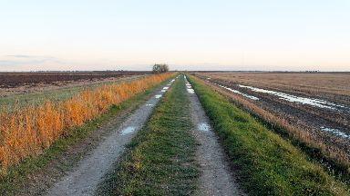 Field near Alford, Aberdeenshire