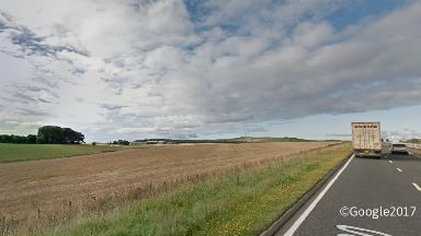 Wheat field near Stonehaven Aberdeenshire on the A90