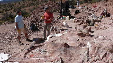 Researchers with the excavated bones of the giant dinosaur