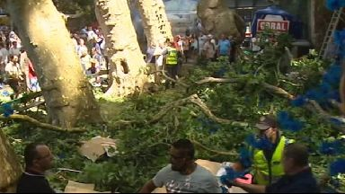 Witnesses reported the tree had been leaning.
