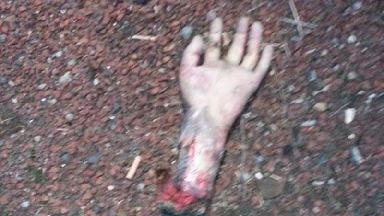Fake severed hand