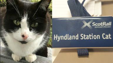 Hyndland Station Cat