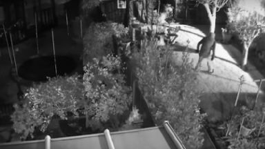 Police want help to find two men who attacked an elderly man in his own home