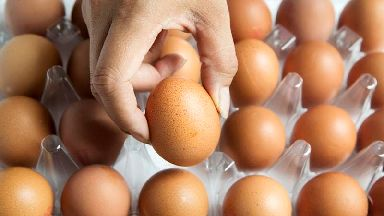 An egg a day could keep the doctor away, research suggests