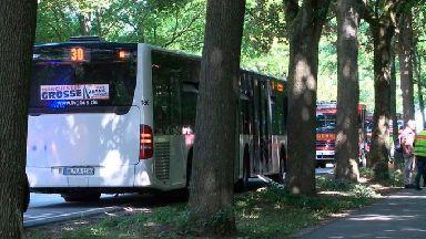 bus germany